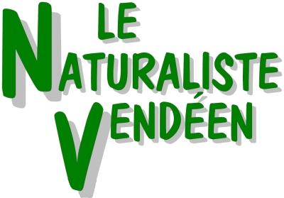 Logo_revue_couleurs_400p