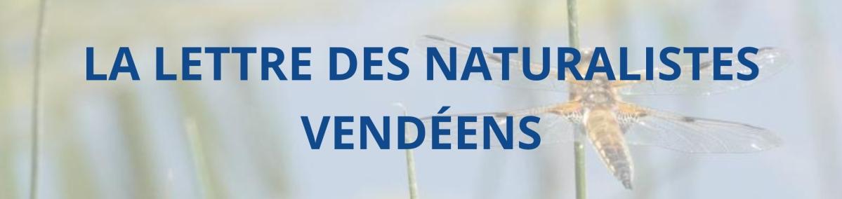 LA LETTRE DES NATURALISTES VENDEENS
