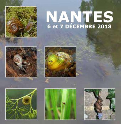 Malaco_Nantes2018