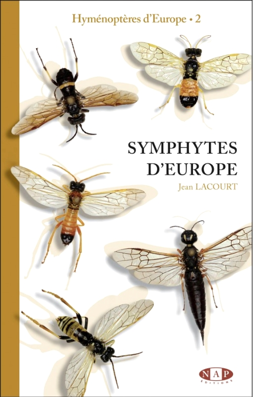 1-Symphytes-d-europe-hymenopteres-d-europe-2