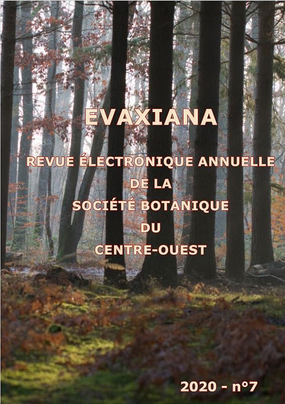 4-Evaxiana-07