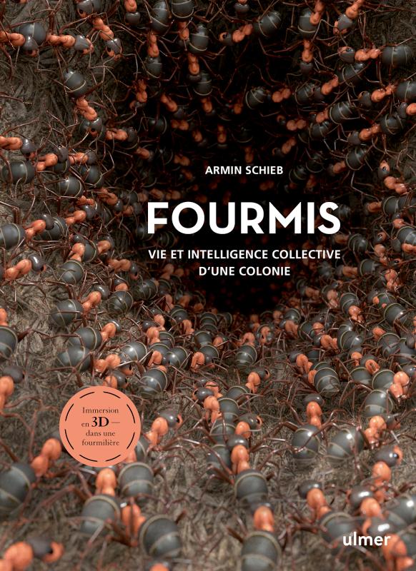 FOURMIS_Ulmer