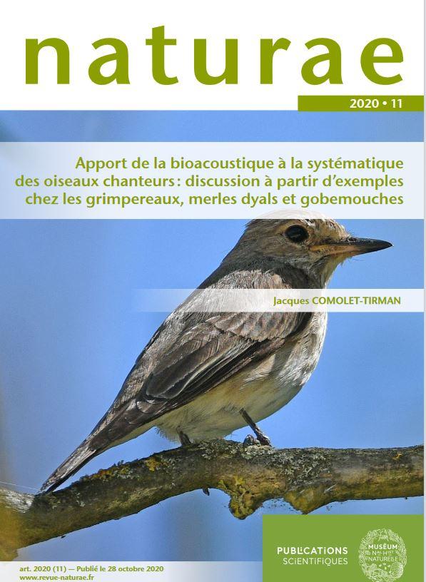 bioaccoustique oiseaux