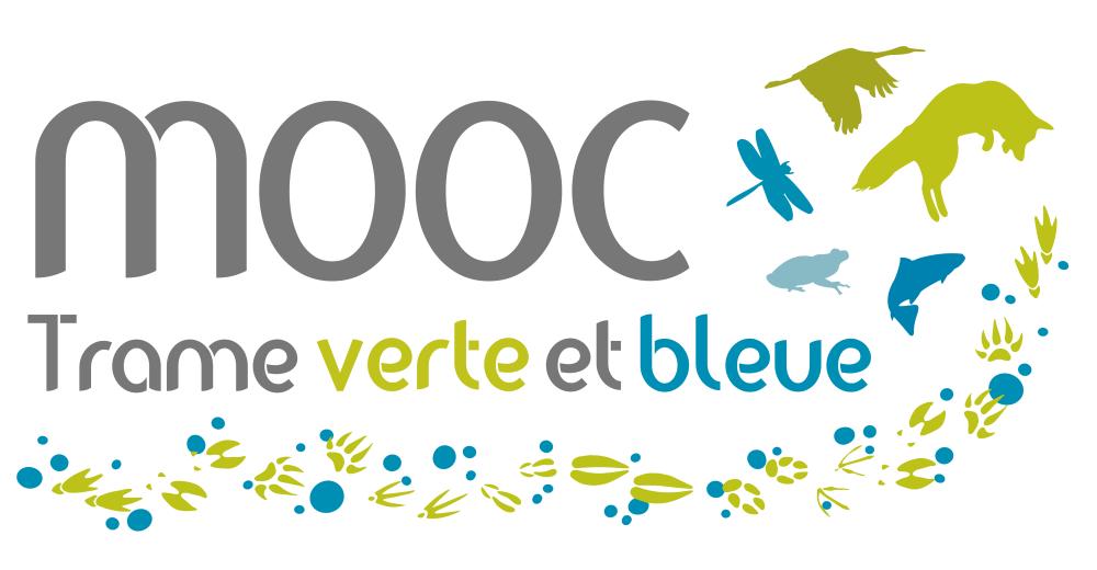 Logo_MOOC-TVB