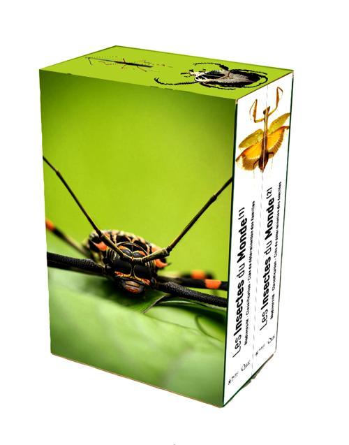 Insectes_du_Monde